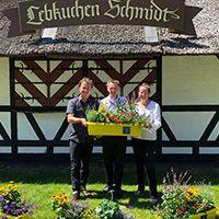 Lebkuchen-Schmidt bietet Stadtbienen eine Heimat