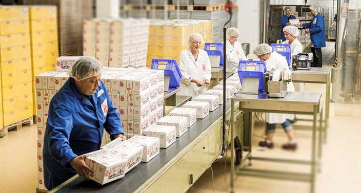 Mitarbeiter verpacken hergestellte Lebkuchen in große Kartons